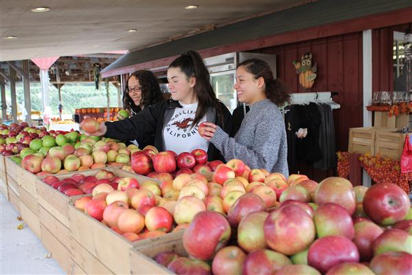 Highland High School students select an apple from the apple bins